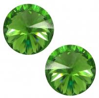 14 Fern Green