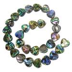 Abalone Shell Beads